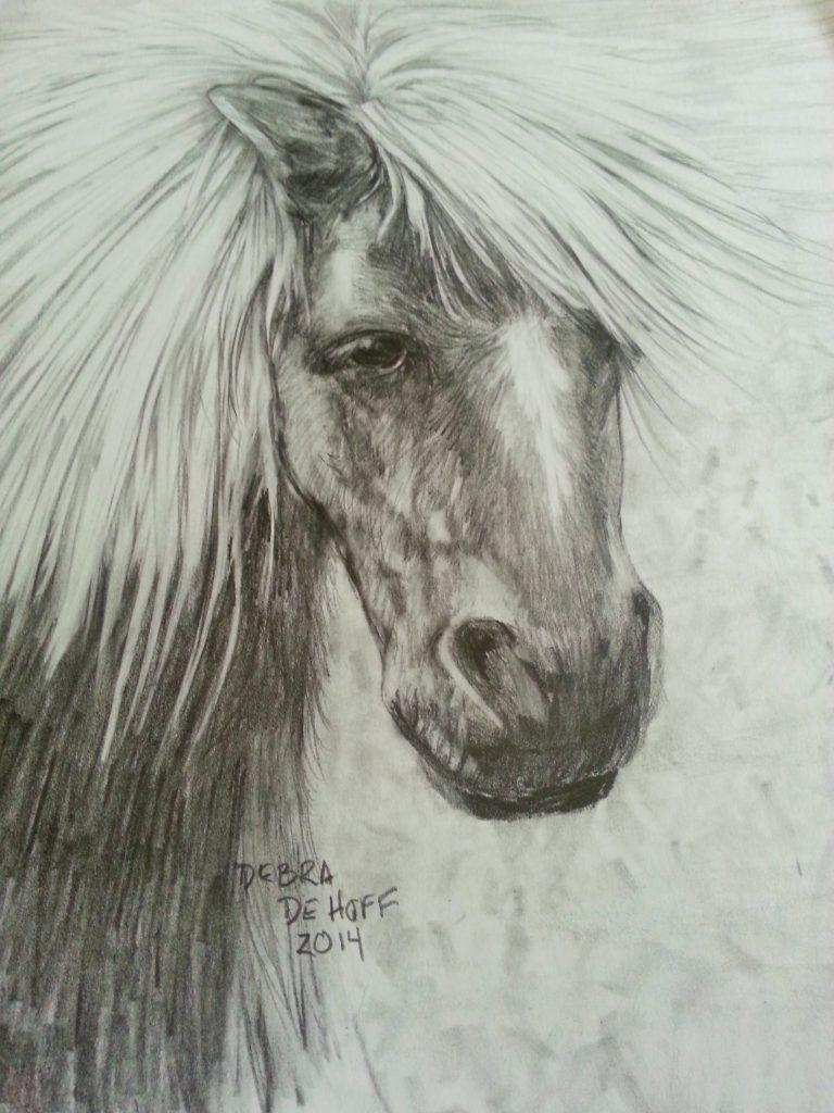 animal drawings DeHoff Arts- copy writes apply